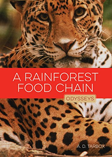 9781628321449: A Rainforest Food Chain (Odysseys in Nature)