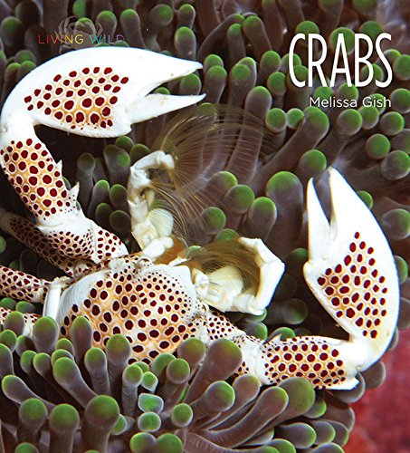 Crabs (Living Wild (Paperback)): Melissa Gish