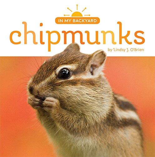 9781628322934: Chipmunks (In My Backyard)