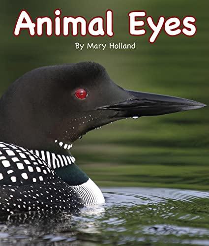 Animal Eyes: Mary Holland