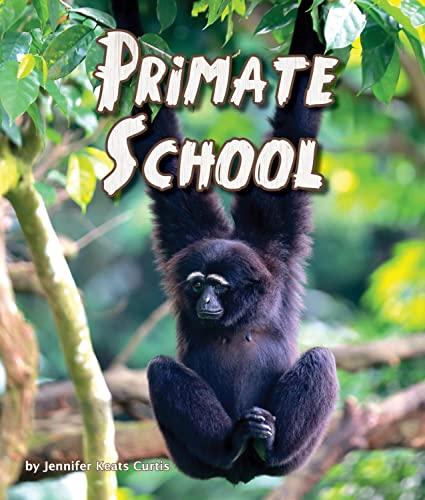 Primate School: Jennifer Keats Curtis