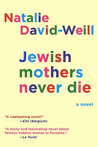 9781628724073: Jewish Mothers Never Die: A Novel