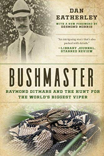 Bushmaster: Raymond Ditmars and the Hunt for the World's Largest Viper: Eatherley, Dan