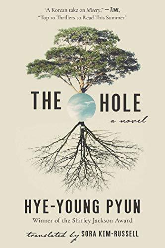 9781628727807: The Hole: A Novel