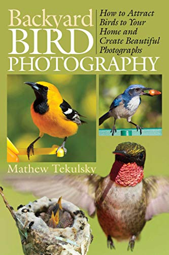 9781628737400: Backyard Bird Photography: How to Attract Birds to Your Home and Create Beautiful Photographs