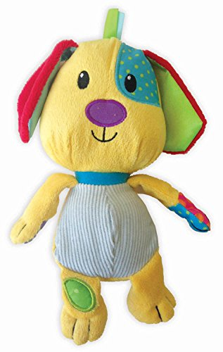 9781628850017: Baby's First Plush Dog