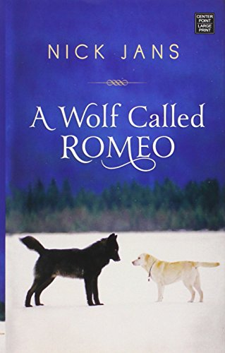 9781628992397: A Wolf Called Romeo