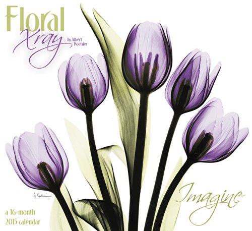 Floral X-Ray Wall Calendar (2015): Day Dream