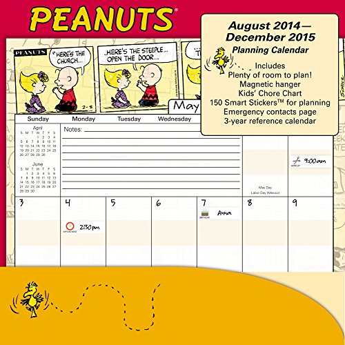 9781629051086: Peanuts Pocket Wall Calendar (2015)