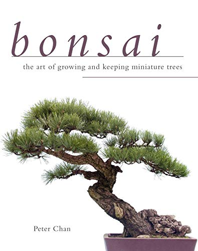9781629141688: Bonsai: The Art of Growing and Keeping Miniature Trees