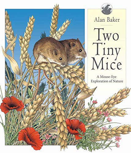 9781629146270: Two Tiny Mice: A Mouse-Eye Exploration of Nature