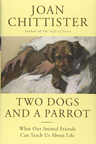 9781629190068: Two Dogs and a Parrot: What Our Animal Friends Can Teach Us About Life