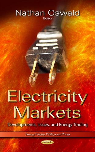 Electricity Markets: Developments, Issues, and Energy Trading (Energy Policies, Politics and Prices...