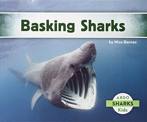Basking Sharks: Barnes, Nico