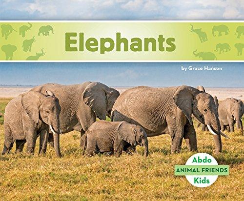 Elephants (Hardcover): Grace Hansen