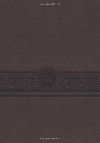 9781629980676: MEV Bible Personal Size Large Print Cherry Brown: Modern English Version