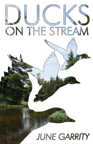 9781630044480: Ducks on the Stream