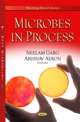 Microbes in Process (Microbiology Research Advances)