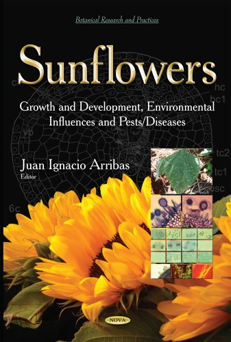 Sunflowers: Growth and Development, Environmental Influences and Pests/Diseases (Botanical ...