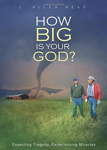 9781631228391: How Big Is Your God?