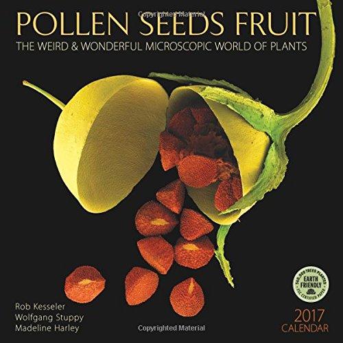 9781631361654: Pollen Seeds Fruit 2017 Wall Calendar: The Weird & Wonderful Microscopic World of Plants