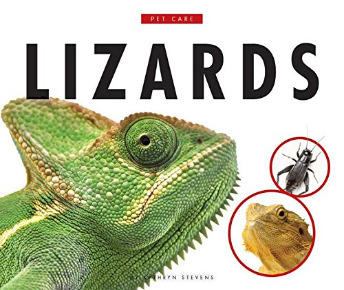 Lizards (Hardcover): Kathryn Stevens
