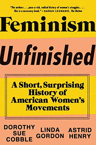9781631490545: Feminism Unfinished: A Short, Surprising History of American Women's Movements