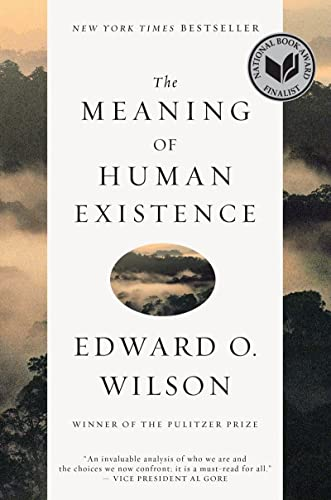 9781631491146: The Meaning of Human Existence