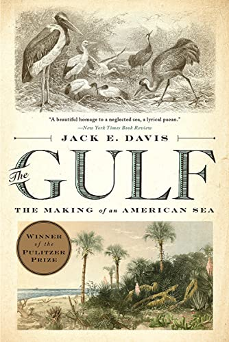 9781631494024: The Gulf: The Making of An American Sea