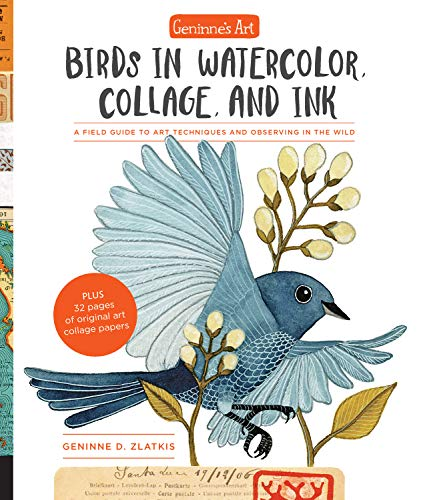 9781631594755: Geninne's Art: Birds in Watercolor, Collage, and Ink; a Field Guide to Art Techniques and Observing in the Wild