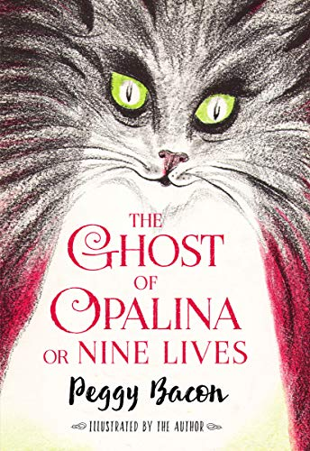 9781631680267: The Ghost of Opalina