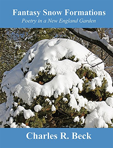 9781631771781: Fantasy Snow Formations: Poetry in a New England Garden