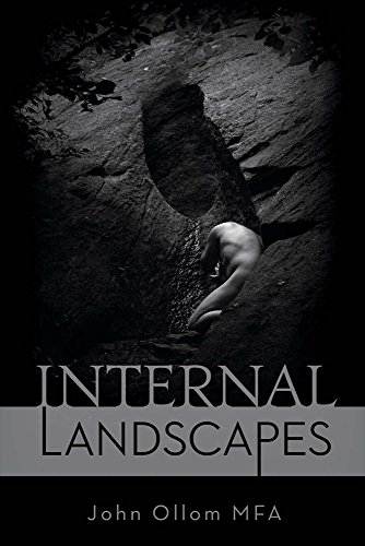9781631926600: Internal Landscapes