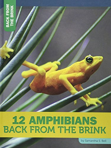 12 Amphibians Back from the Brink (Hardcover): Samantha S. Bell