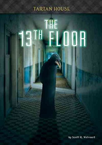 The 13th Floor (Hardcover): Scott R. Welvaert