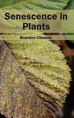 9781632395580: Senescence in Plants