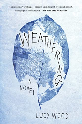 9781632863591: Weathering