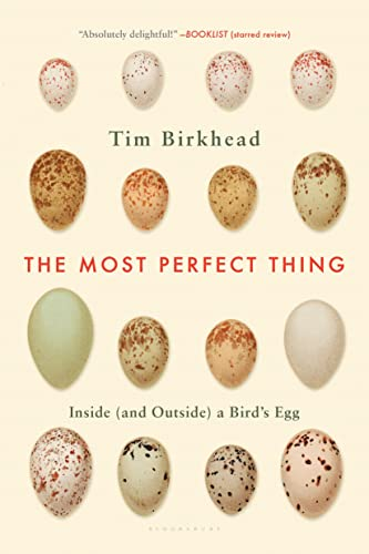 9781632863706: The Most Perfect Thing: Inside and Outside a Bird's Egg
