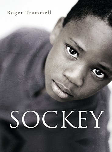 9781633060371: Sockey 1: The Brewster Projects (1941)
