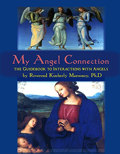 9781633153639: My Angel Connection: The Guidebook to Interactions with Angels