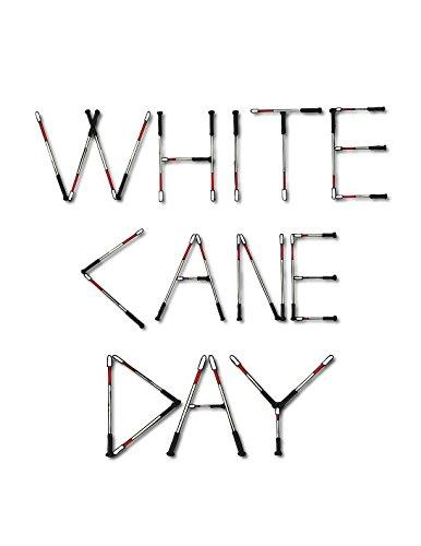 9781633186071: White Cane Day