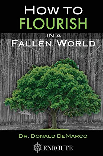 9781633370418: How to Flourish in a Fallen World