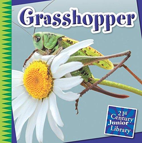 Grasshopper (Library Binding): Susan Heinrichs Gray