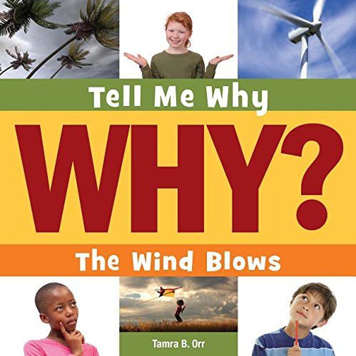 9781633626188: The Wind Blows (Tell Me Why)