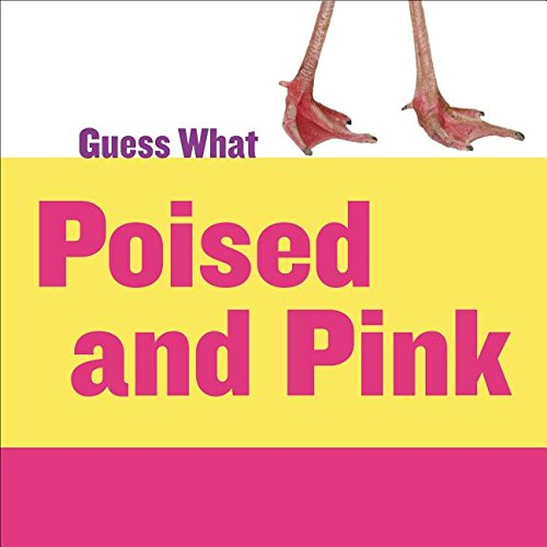 Poised and Pink: Flamingo (Guess What): Calhoun, Kelly