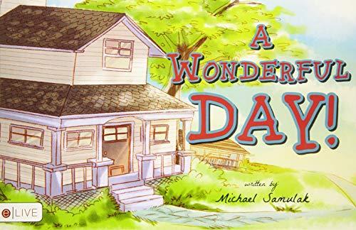 9781633673533: A Wonderful Day!