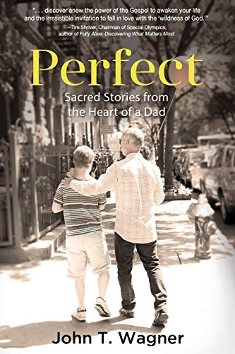 9781633931985: Perfect: Sacred Stories from the Heart of a Dad