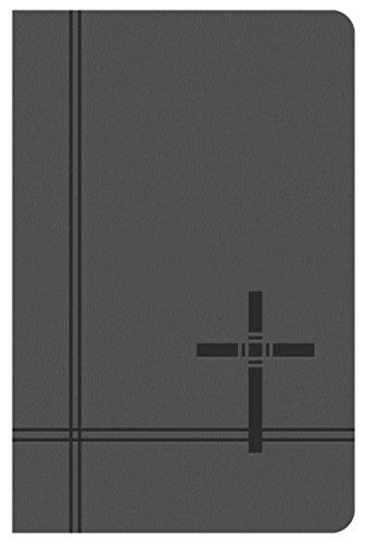 KJV Deluxe Gift and Award Bible [Gray]
