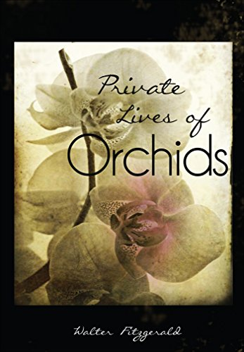 9781634185158: Private Lives of Orchids