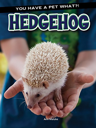 Hedgehog (Hardcover): Ann Matzke